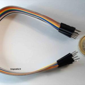 Câbles de connexion mâle/mâle type Dupont de 20cm