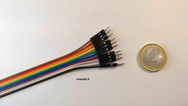 10 câbles individuels de connexion mâle/mâle type Dupont - Vue d'une extrémité