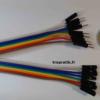 10 câbles individuels de connexion mâle/femelle type Dupont - Vue de face